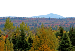 The summit of Mount Pleasant, southwestern New Brunswick, viewed from Harvey Station 35 kilometres to the north