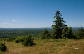 View from the top of Mount Pleasant, facing southwest across Charlotte County toward Maine, USA.