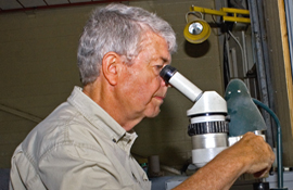 Adex's resident geologist Gustaaf Kooiman examines a polished sample of the Mount Pleasant ore through a microscope.