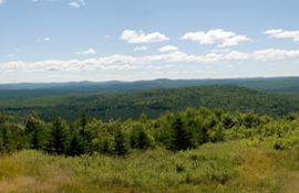 View from the Mount Pleasant summit, facing southeasterly.